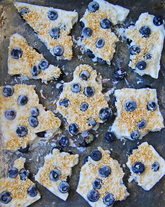 Blueberry and toasted coconut coyo frozen yoghurt yogurt bark vegan dairy free healthy sugar free 2