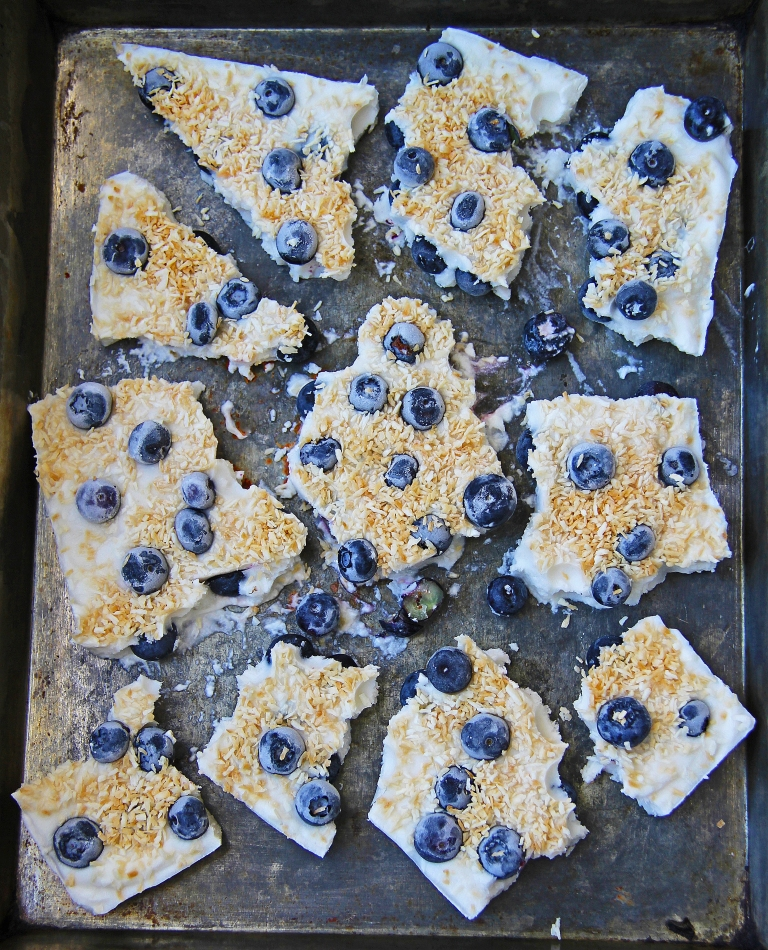 Blueberry and toasted coconut coyo frozen yoghurt yogurt bark vegan dairy free healthy sugar free